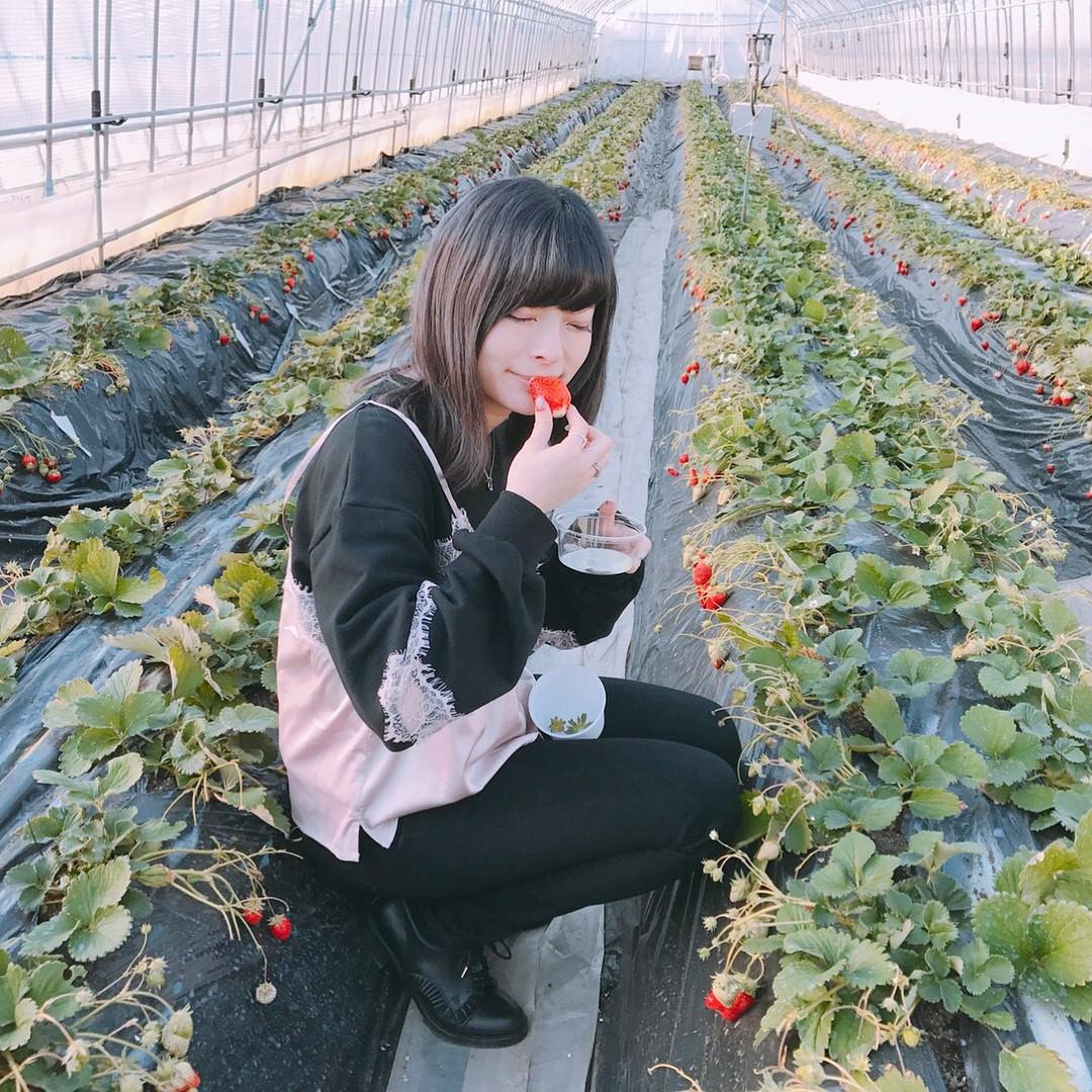きゃりーぱみゅぱみゅさん(25)、可愛い