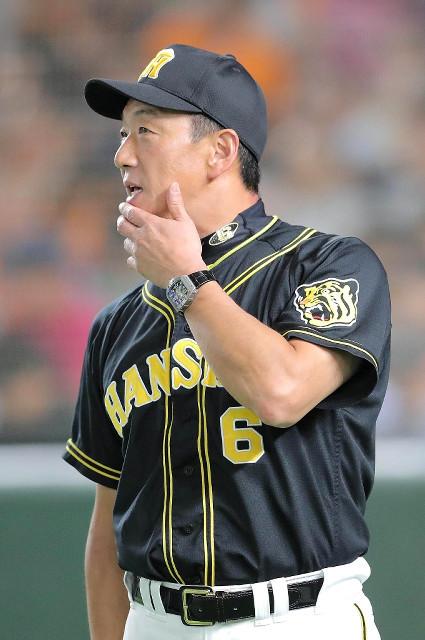 阪神・金本監督「よくやったと思いますよ。広島相手に」