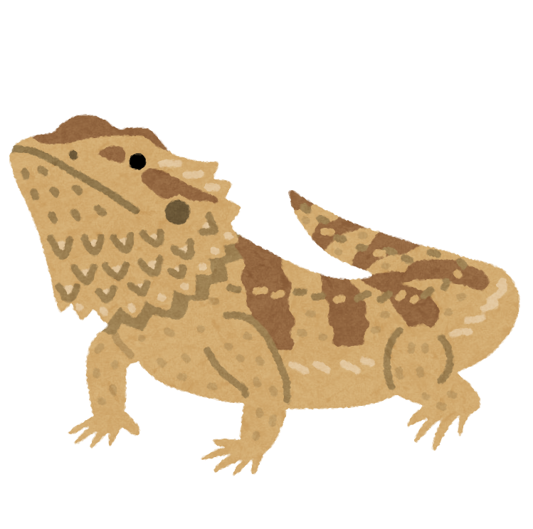 lizard_futoagohigetokage
