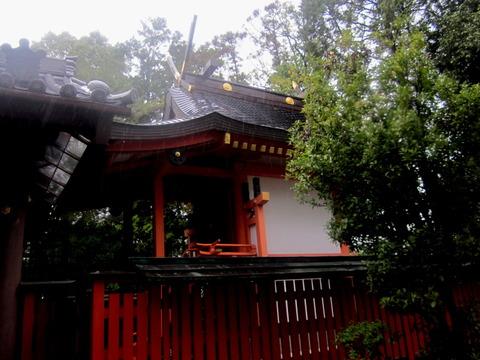 百済王神社本殿2