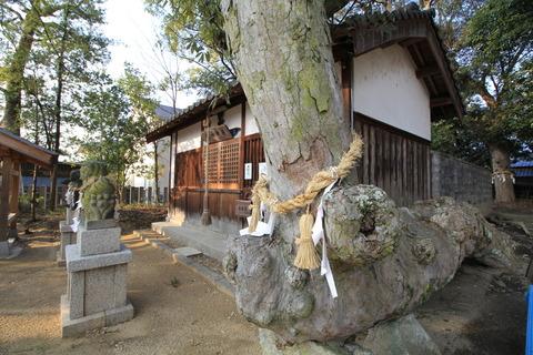 角刺神社4