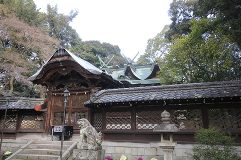 伊居太神社の本殿1