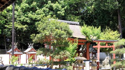宇奈太理坐高御魂神社の本殿