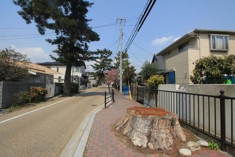 吉志部神社の参道