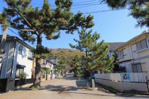 垂水神社の表参道(垂水基岡)