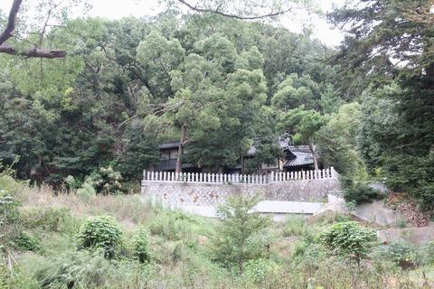 北條神社全景(八幡山)