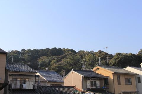 船岡山全景