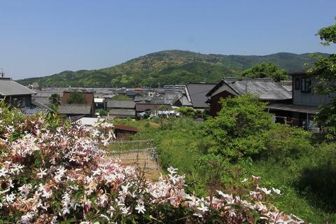 三輪山 (2)