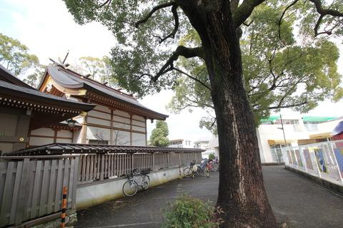 小戸神社3