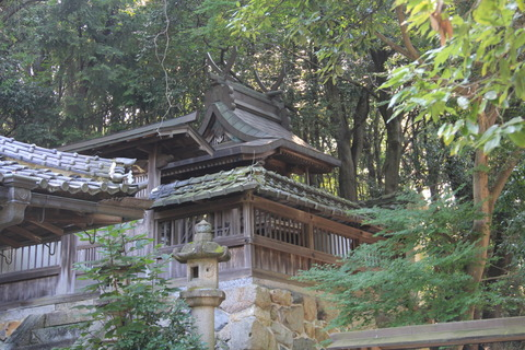 長谷神社5