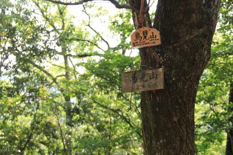 鳥見山霊畤5山頂2