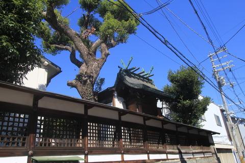 船待神社7