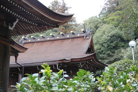 多田神社7本殿