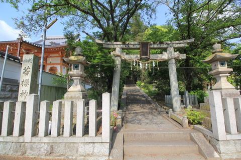 若櫻神社1-2