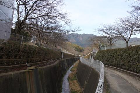 金村神社1