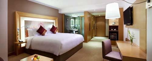 novotel hotel 2