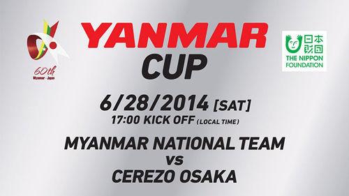 yanmar cup