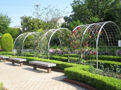 清谷池公園 (2)
