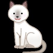 cat_tonkinese