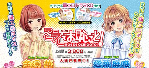 オリジナル萌エロドラマCD付きオナホール『こえでお恥ごと!』