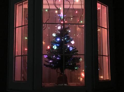 20171207_christmas_tree