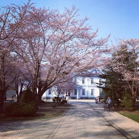 20180429_nakajimapark