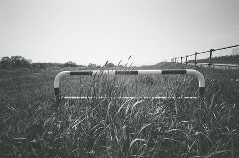 BESSA-L 反省会場 8 フィルム装填編