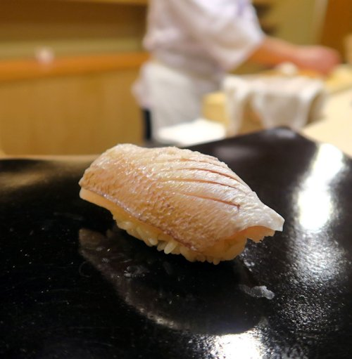 10春子鯛