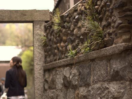 石塀小 路