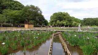北山公園01
