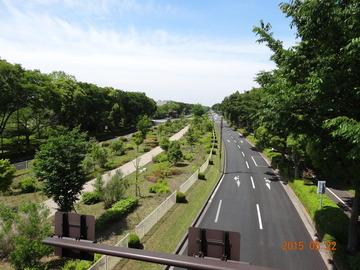 昭和記念公園04