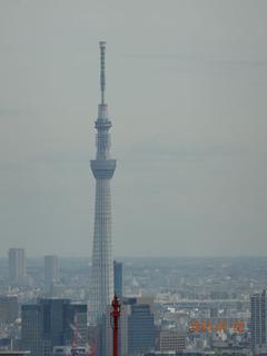 東京都庁05