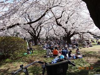 小金井公園04