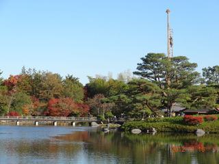 昭和記念公園18