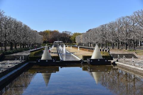 昭和記念公園1603