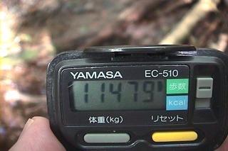 千曲川源流02