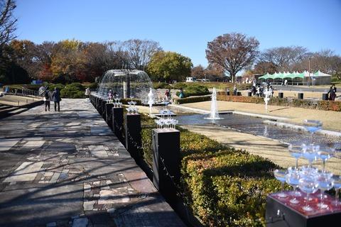 昭和記念公園1607