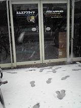 雪の日 エムズアプライド1