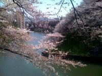 20104_入学式03