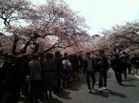 20104_入学式02