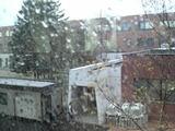 初雪ですよ