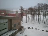 静かなキャンパス