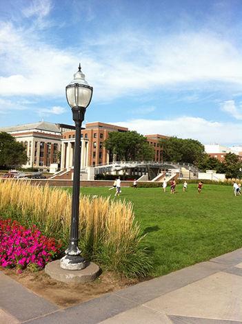 ミネソタ大学