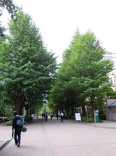 青山学院キャンパス