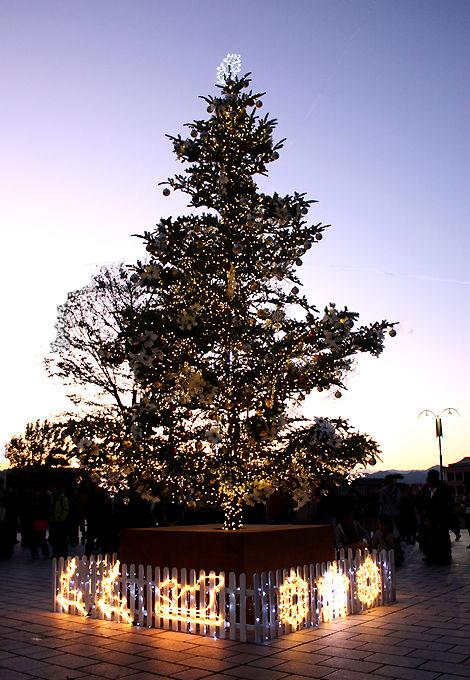 クリスマスツリー 日本工学院八王子専門学校