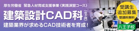 cad_header2
