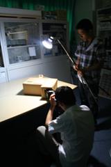 模型写真撮影