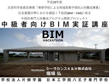 BIM01