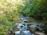 谷川岳の渓流2