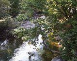 谷川岳の渓流3